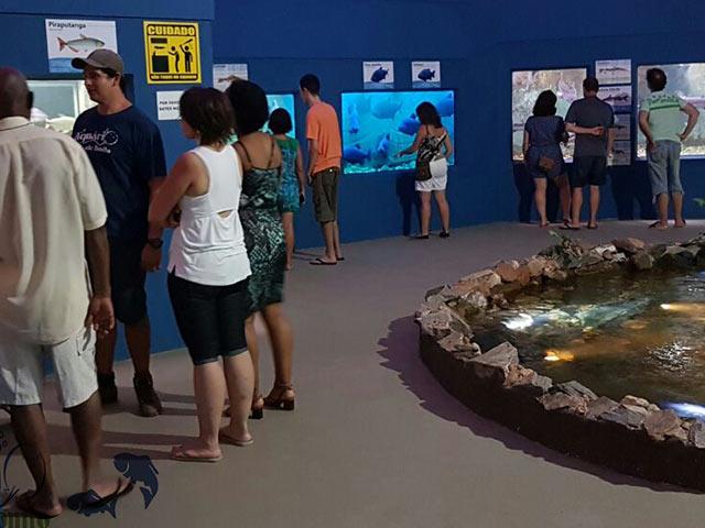 Aquario-de-Bonito-Bonitour-Passeios-em-Bonito-MS-111425_2105.jpg