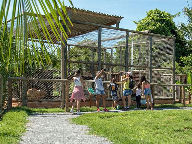 Bio-Park--Bonitour-Passeios-em-Bonito-2974016_27989.jpg