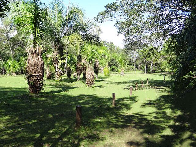 Eco-Park-Entrada-Ilha-do-Padre-Bonitour-Passeios-em-Bonito-MS-4996_1043.jpg - Passeios em Bonito MS