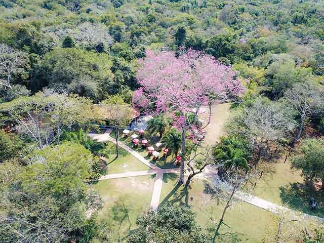 Jardim-EcoPark-Bonitour-Passeios-em-Bonito-3064068_57958.jpg