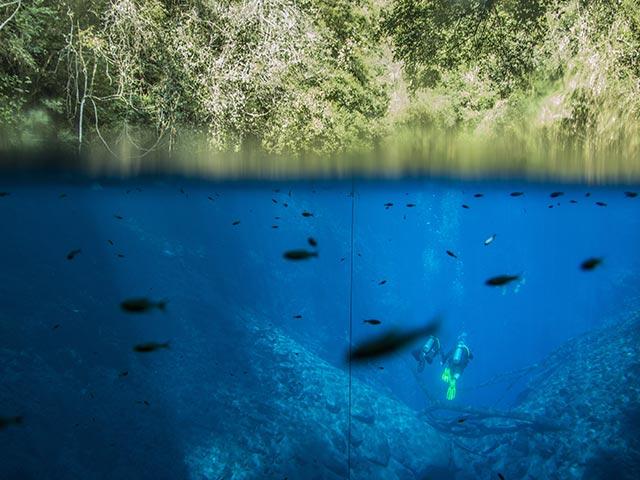 Lagoa-Misteriosa-Mergulho-Bonitour-Passeios-em-Bonito-MS-1605_1081.jpg