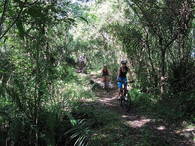 Lobo-Guara-Bike-Bonitour-Passeios-em-Bonito-MS-1382_1949.jpg