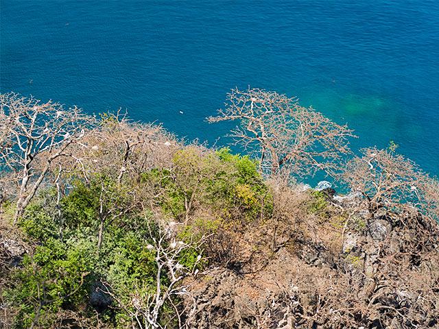 Mirante-dos-golfinhos-Bonitour-Passeios-em-Fernando-Noronha-697069_6240.jpg