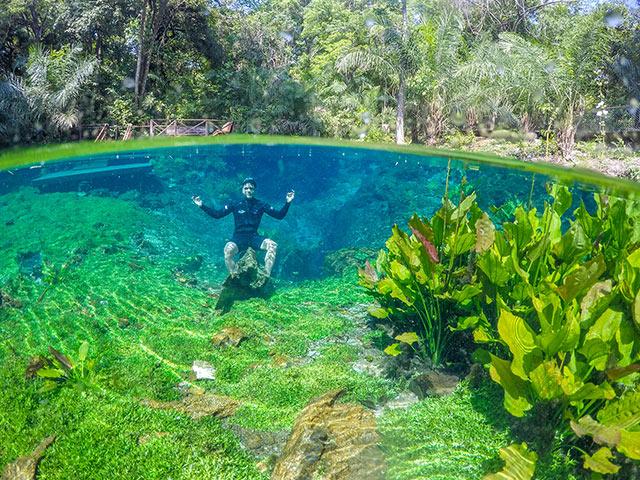 Nascente-Azul-Flutuacao-Bonitour-Passeios-em-Bonito-MS-1106_5413.jpg