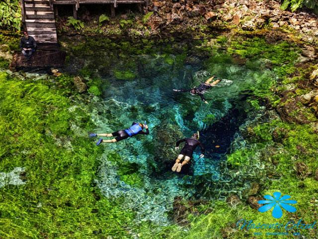 Nascente-Azul-Flutuacao-Bonitour-Passeios-em-Bonito-MS-1106_66445.jpg