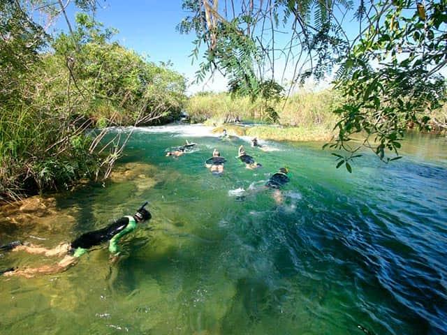 Parque Ecológico - Flutuação