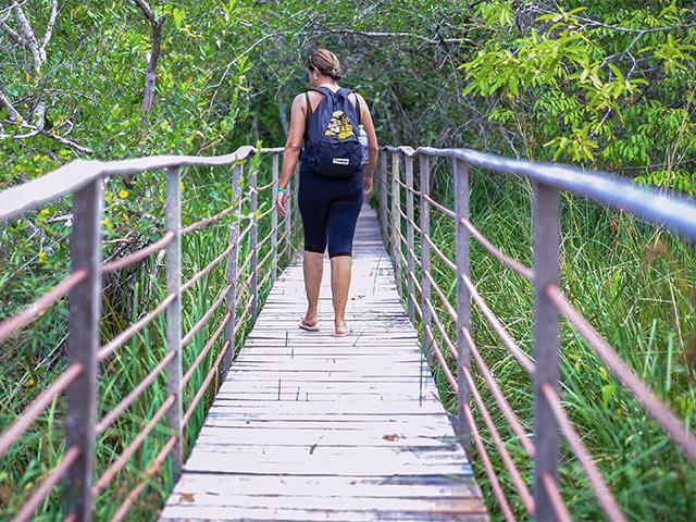 Parque-Ecologico-trilha-Bonitour-Passeios-em-Bonito-MS-1864915_2551.jpg - Passeios em Bonito MS