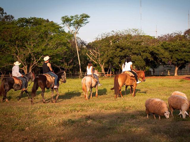 Rio-da-prata-cavalgada-Bonitour-Passeios-em-Bonito-MS-1594_1146.jpg - Passeios em Bonito MS