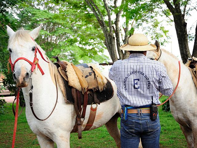 Rio-da-prata-cavalgada-Bonitour-Passeios-em-Bonito-MS-1594_1993.jpg - Passeios em Bonito MS