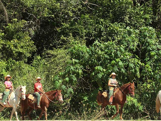 Rio-sucuri-cavalgada-Bonitour-Passeios-em-Bonito-MS-1593_2181.jpg - Passeios em Bonito MS