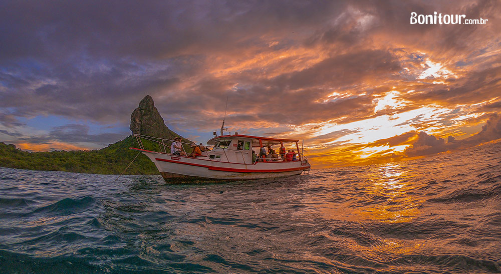 Passeios de barco em Fernando de Noronha - bonito