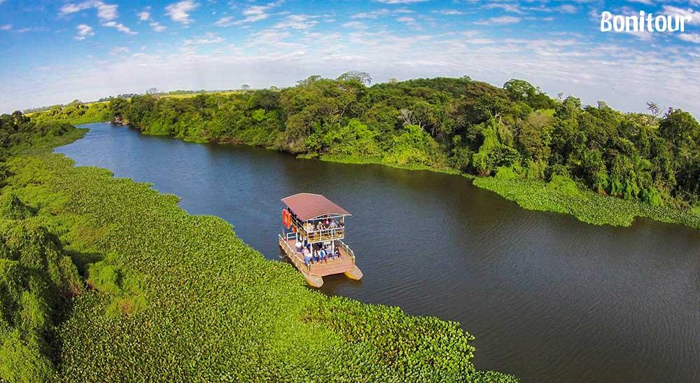 Curiosidades sobre o Pantanal: o paraíso do ecoturismo brasileiro - bonito